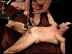 muscle-cbt-bash-his-balls-beat-his-cock