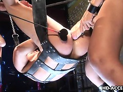 two-asian-femdoms-peg-their-ass-slave-on-a-swing