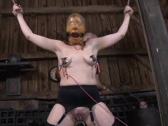 Pretty Babe's Sweet Teats Acquires Painful Torturing