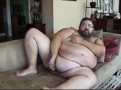 chub-bear-about-the-sofa