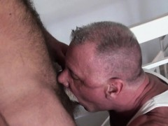 Silver Wolf Cocksucking Hairy Otter