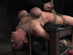 Busty Shorthair Nympho Roped And Punished Online