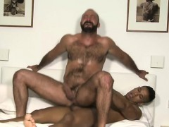 european-bear-casting-couch-and-cumshot