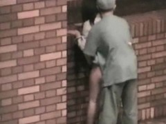 Outdoor Sex Couples Witness