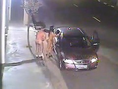 couple-fucking-was-captured-by-camcorder-within-the-road