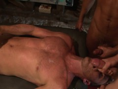 Dick Sucked Studs Spunk
