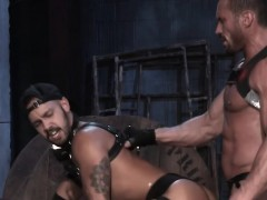 bareback-action-with-a-big-cock-is-the-best-of-all