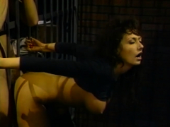 Behind the bars pounding with busty brunette